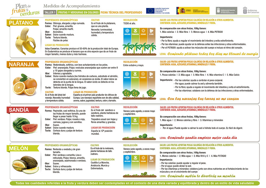 Ficha t cnica del profesorado programa pipo - Informacion sobre la fibra vegetal ...